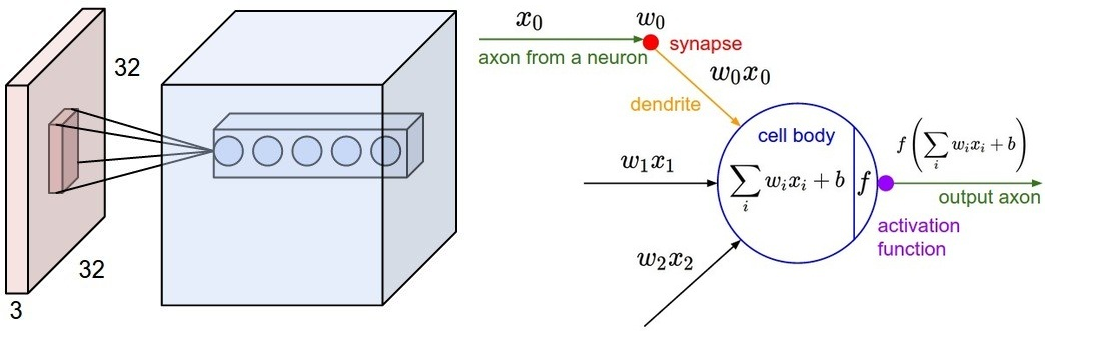 Figure 7: Left: An example input volume in red and an example volume of neurons in the first Convolutional layer. Each neuron in the convolutional layer is connected only to a local region in the input volume spatially, but to the full depth (i.e. all color channels). Note, there are multiple neurons (5 in this example) along the depth, all looking at the same region in the input Right: The neurons still compute a dot product of their weights with the input followed by a non-linearity, but their connectivity is now restricted to be local spatially. Source: Stanford CS231 course.