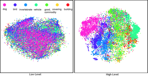 "Figure 2: Projection of low-level ""shallow"" features (left) and high-level ""deep"" features (right) from a vision model where related objects group together in the deep representation. Points that are close in this visualization are close in the model representation. Each point represents the feature extracted from an image and the color marks the general category of its contents. The model was trained on precise object classes like ""espresso"" and ""chickadee"" but learned features that group dogs, birds, and even animals on a whole together despite their visual contrasts [2]."