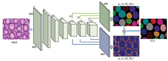 mask-rcnn and instance segmentation network | Kaggle