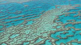 GPUs Help Find a Massive New Reef Hiding Behind Great Barrier Reef
