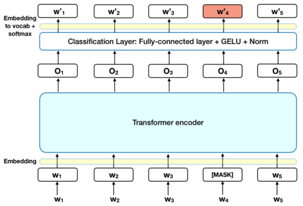 The diagram shows the work relationships learned from the corpus, from encoding to the classification layer that is a fully connected layer with GELU and Norm.