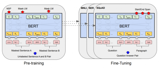 The pre-training and fine-tuning processes for BERT use the same architecture. In the first case A, B sentence pairs are the input. In the second case, question-answer pairs are the input. There are three types of fine-tuning, corresponding to whether the goal is SQuAD question-answering, Named Entity Recognition (NER), or Multi-Genre Natural Language, a crowd-sourced collection of sentence pairs.