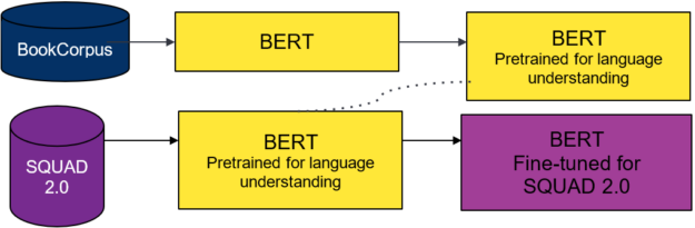 Pretraining and fine-tuning process for the BERT teacher model.