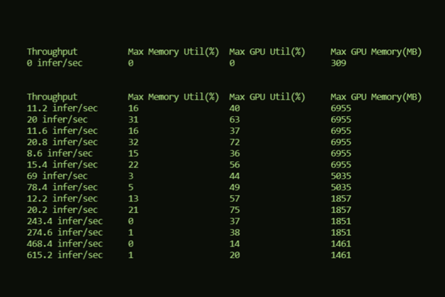 The screenshot shows a table from Model Analyzer showing the throughput, max memory utilization, max GPU utilization, and max GPU memory options.