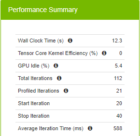This figure shows some numbers about the run including wall clock time, tensor core kernel efficiency, GPU idle %,  total iterations, profiler iterations, start iteration, stop iteration, and average iteration time.