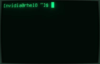 Blank terminal screen