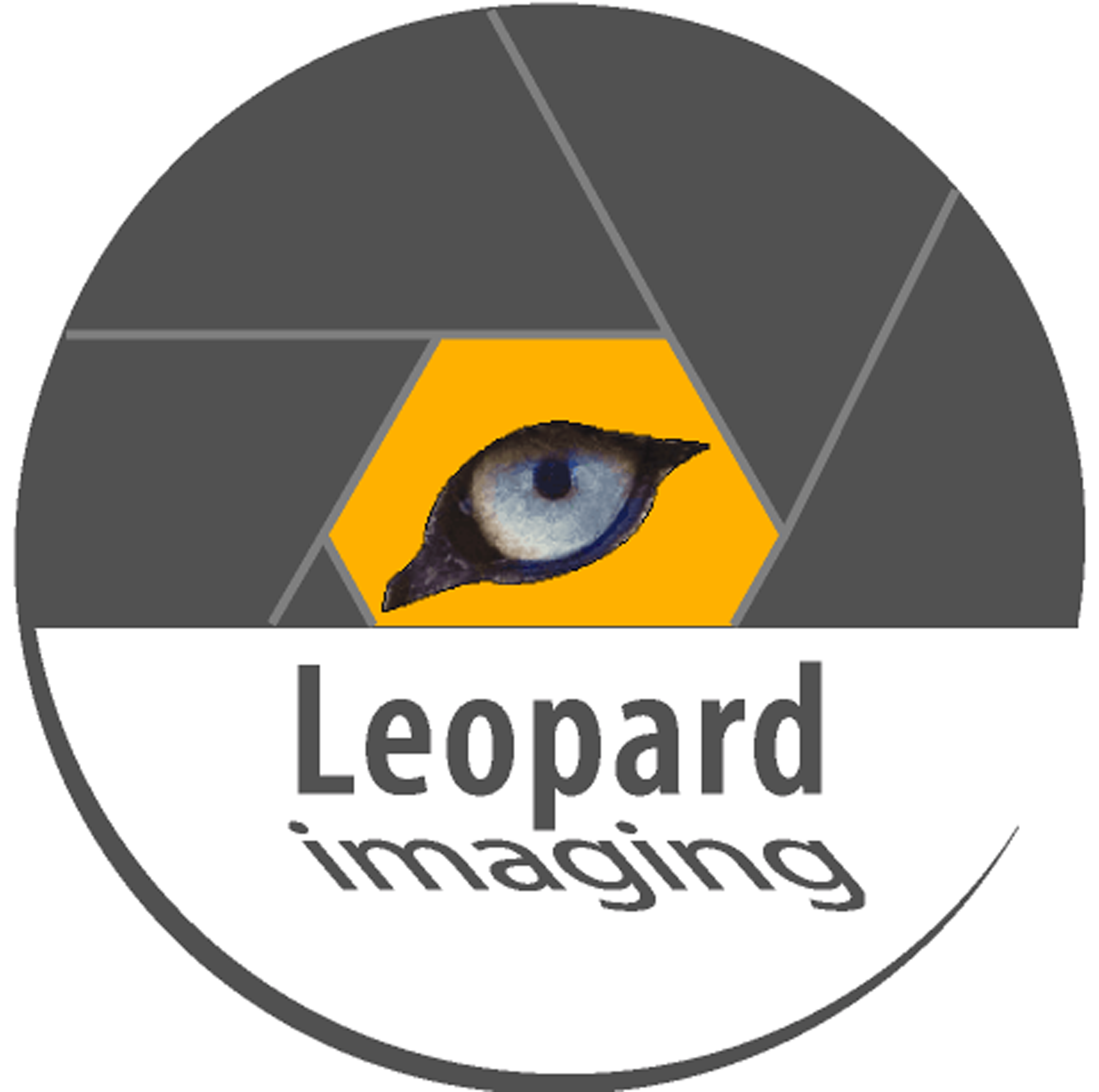 Leopard Imaging Inc.