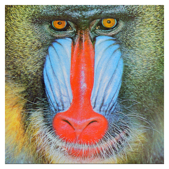 The canonical mandrill face.