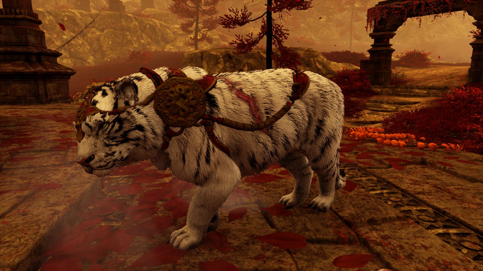 картинки тигров из игр этот раз