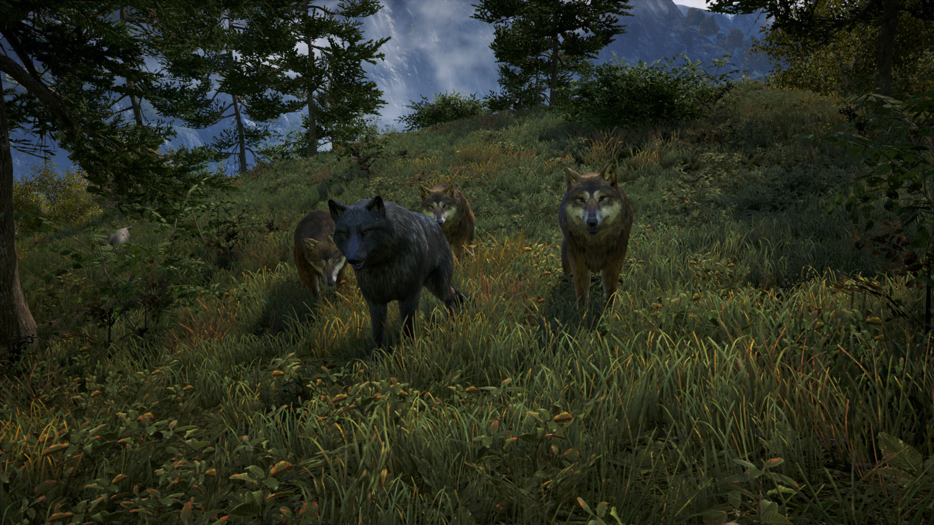 NVIDIA HairWorks In FarCry 4