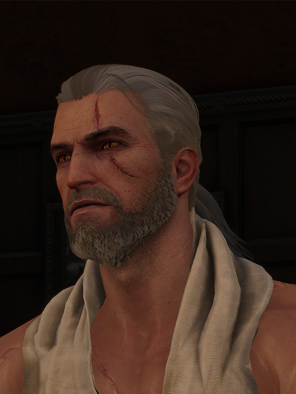 Nvidia Hairworks In The Witcher 3 Nvidia Developer