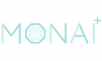 MONAI v0.2 Brings Domain Specialized Best Practices to Medical Imaging AI Researchers