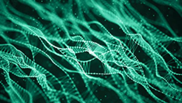The Human Genome Center at University of Tokyo Adopts NVIDIA Clara Parabricks for Rapid Genomic Analysis